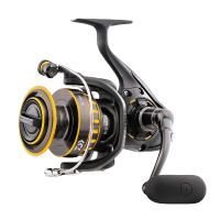 "Daiwa BG 6500 Spinning Reel or 8000-"" March Stock Clearance"" normal price was R2599.00 now R2395.00"