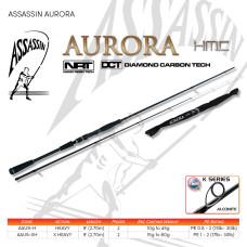 Assassin Aurora 9ft Heavy, 2pc